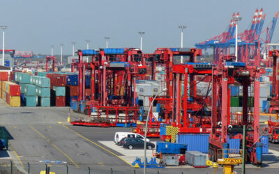New Customs Intermediary Services